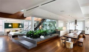 Healthy Indoor Garden