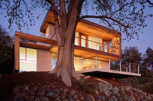 passive solar tree house by la architects standard - Home Heating Design