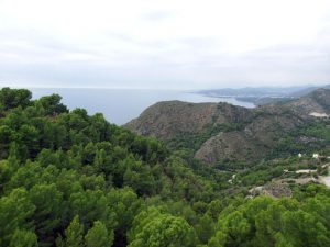 View From the Plot at La Herradura